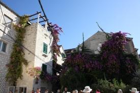 Gamle bygninger med smukke blomster