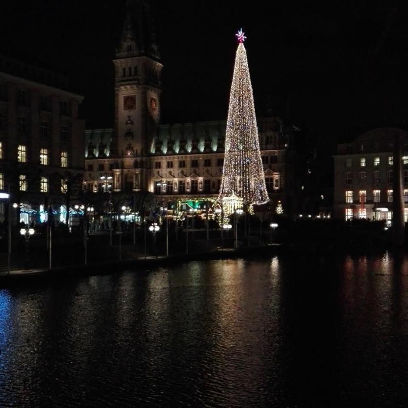 Juletræet ved rådhuset